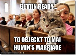 funny-pictures-cat-is-ready-to-object-to-your-marriage
