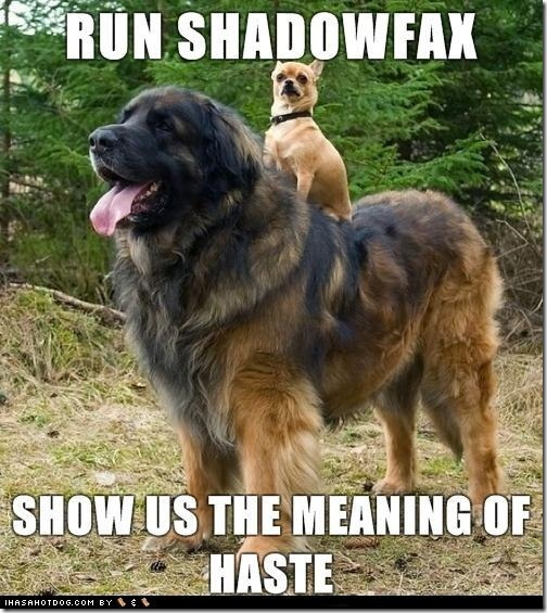 Run, Shadowfax